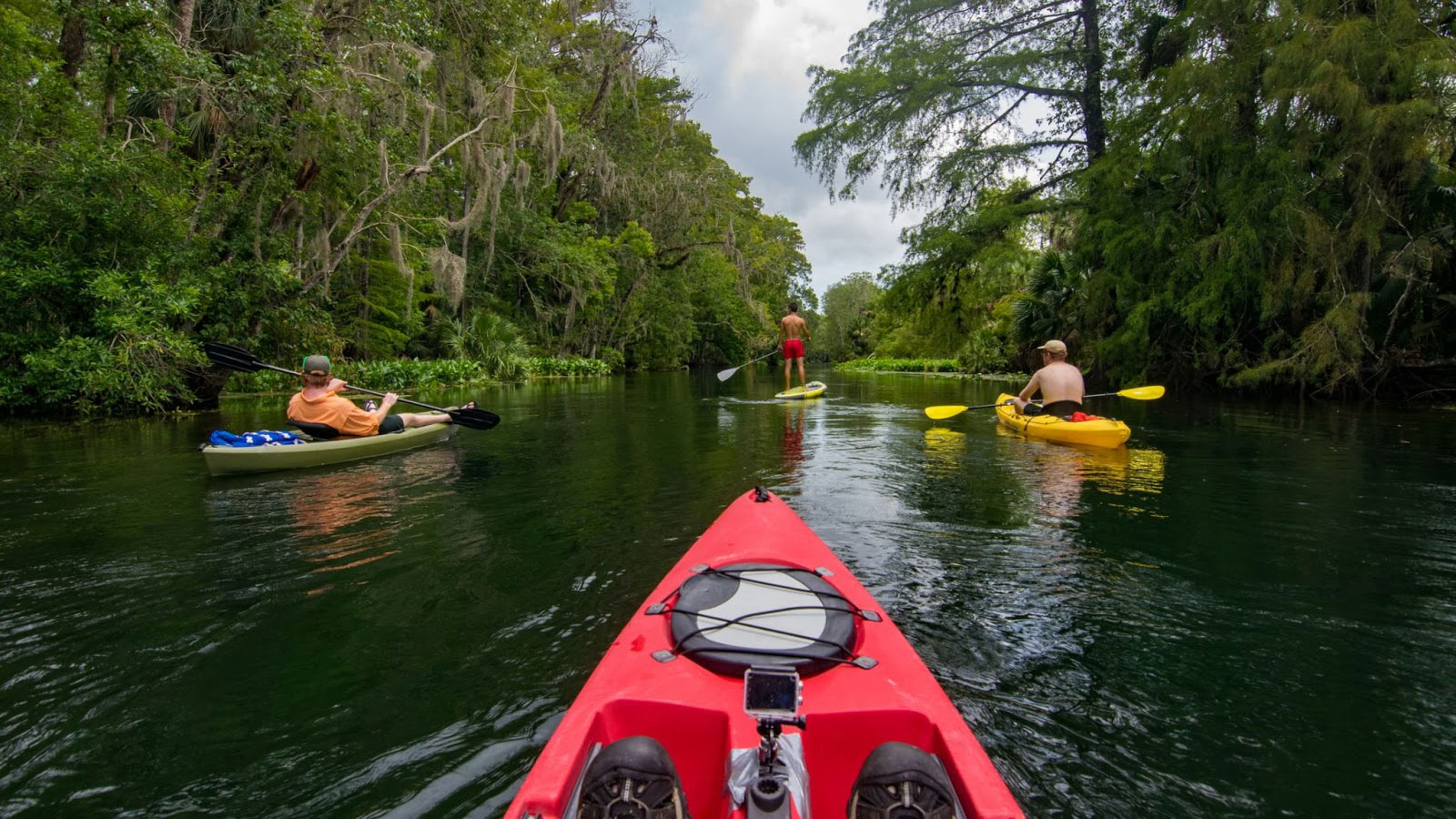 People kayaking and paddle boarding.